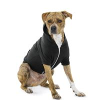 Dog Flex Fleece Hood Thumbnail